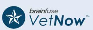 vet-now.jpg